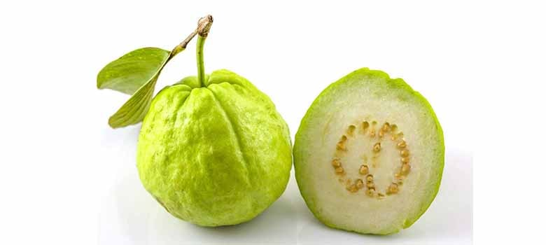 Guava Fruit High In Vitamin C