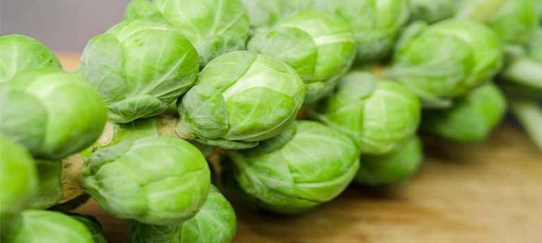 brussels Sprouts - High In Vitamin C